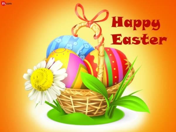 Easter Bunny HD Photos